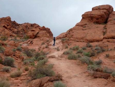 My hubby dwarfed by Valley of Fire State Park, Nevada
